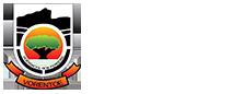 Rob Ferreira Mobile Logo